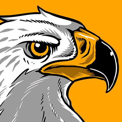 Beautiful Hawk Eagle Art T-Shirt